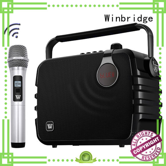 best best karaoke speakers with fm wireless microphone for sale