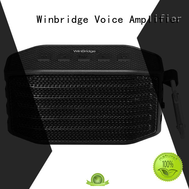 mini best home bluetooth speakers supplier for home Winbridge