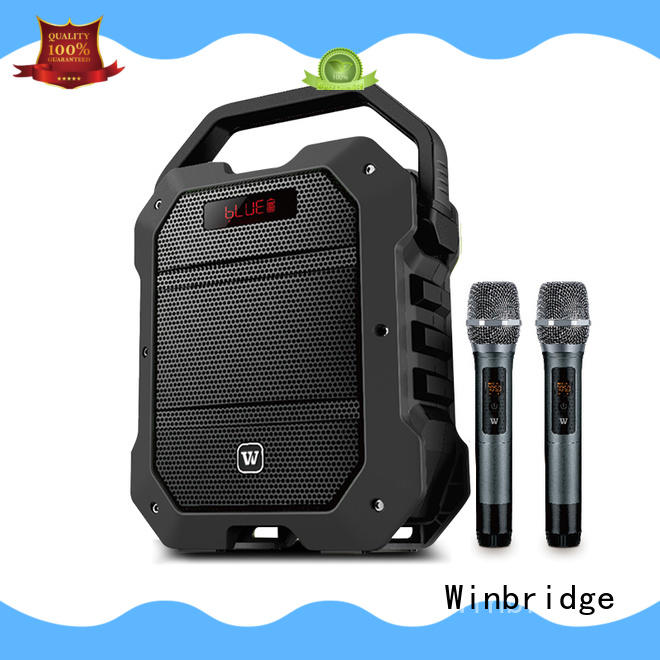 amplifier karaoke party speaker with dual microphone for street performance Winbridge