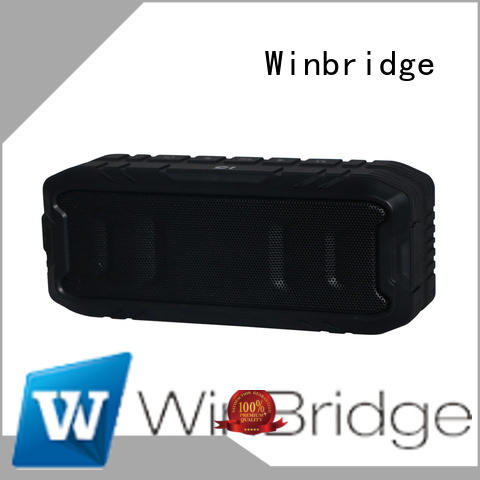 high end best bluetooth speaker customized for cafe Winbridge