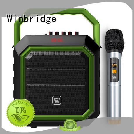 karaoke party speaker for street performance Winbridge