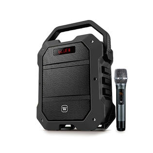 Are there services after portable PA speaker installation?