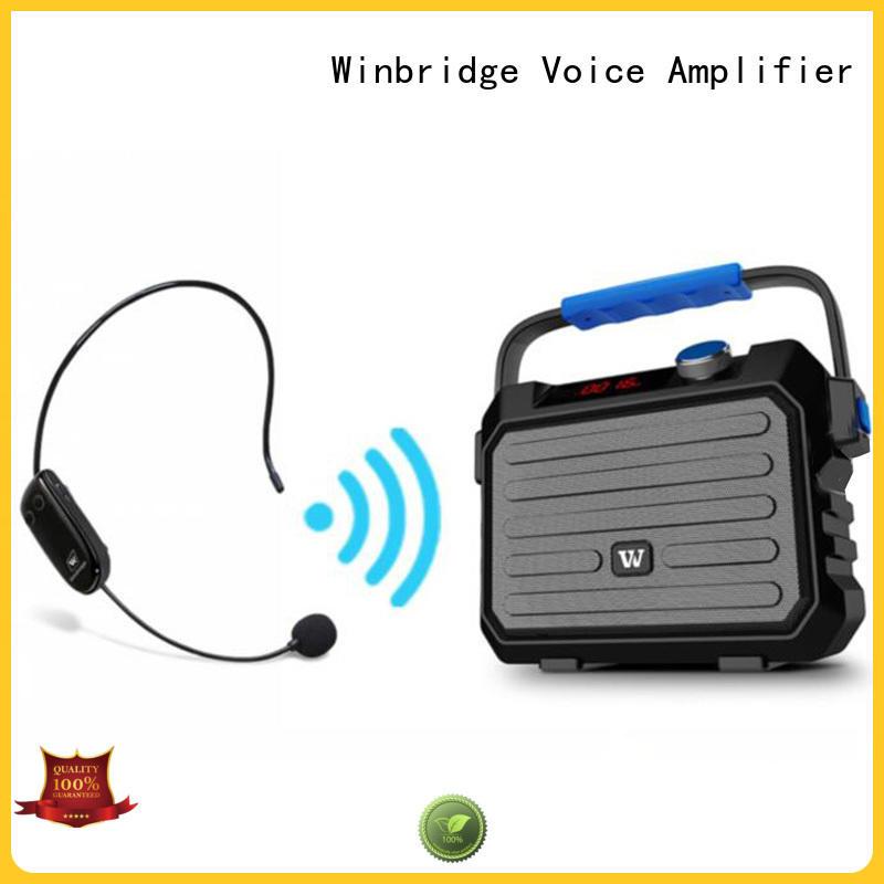 Winbridge loudspeaker karaoke speaker with dual microphone for sale
