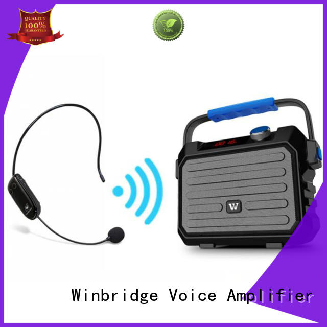 outdoor karaoke mic and speaker with dual microphone for party Winbridge