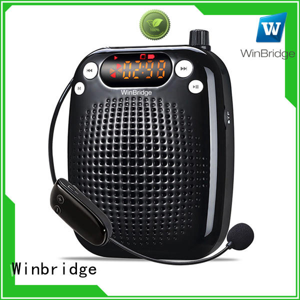 wholesale best voice amplifier manufacturer for sale