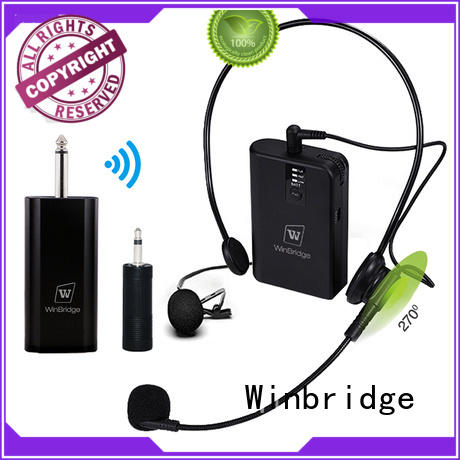 Winbridge WB029 Wireless Microphone System