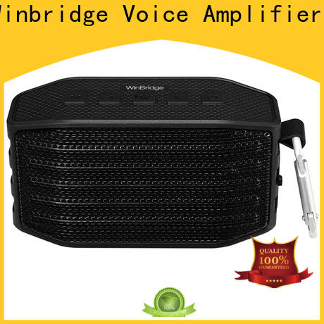 top bluetooth home speakers manufacturer for home