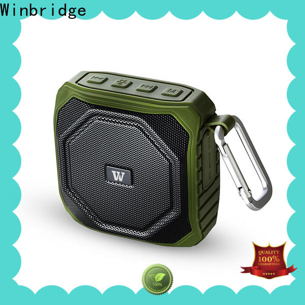 Winbridge best bluetooth speaker company for party