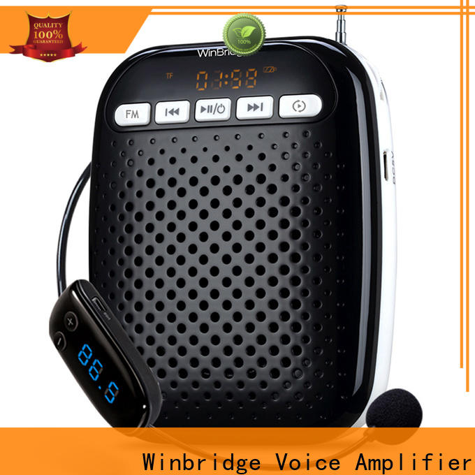 Winbridge mini voice amplifier with wireless microphone wholesale