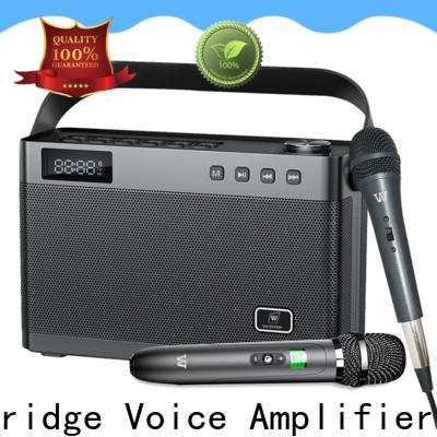Winbridge top karaoke microphone and speaker with dual microphone for sale