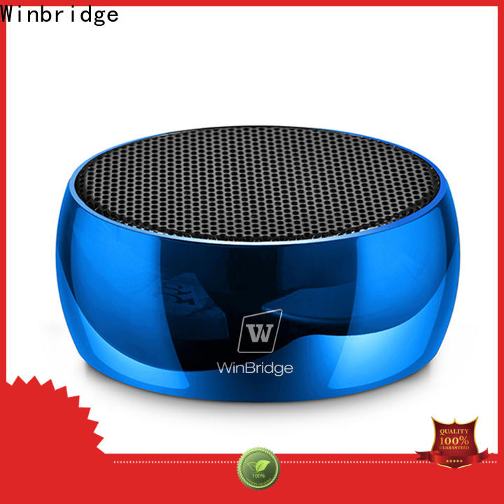 Winbridge bluetooth home speakers supply for cafe
