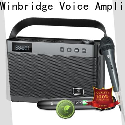 Winbridge amplifier bluetooth karaoke speaker with fm wireless microphone for dance