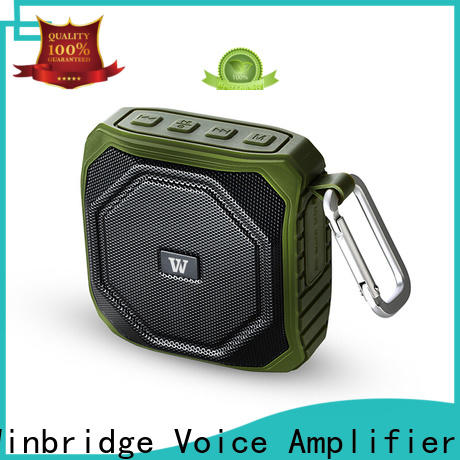 Winbridge bluetooth home speakers company for cafe
