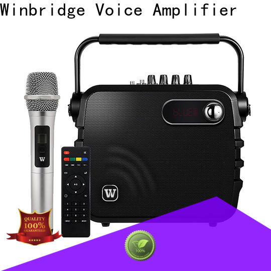 Winbridge wholesale bluetooth pa speakers factory for sale