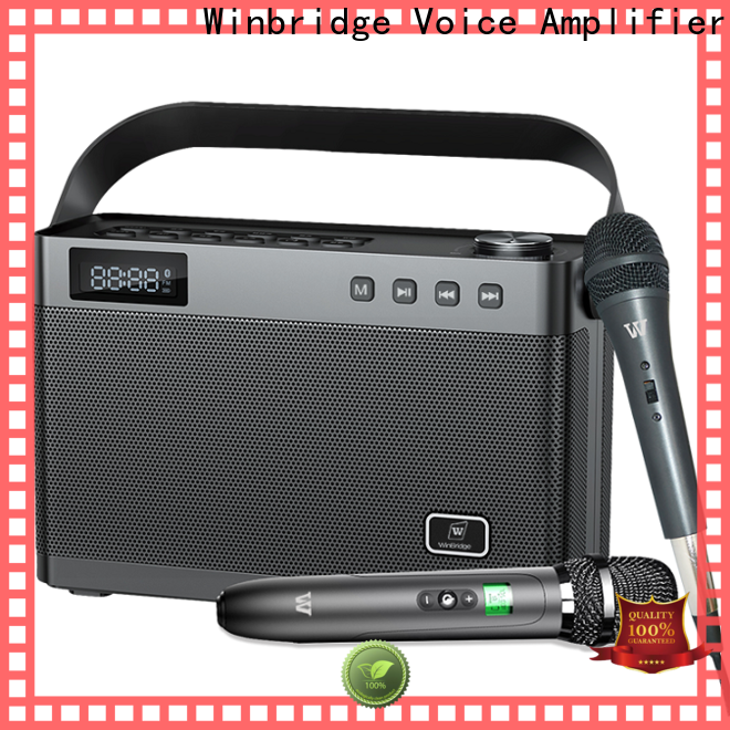 Winbridge karaoke speaker with mic manufacturer for sale