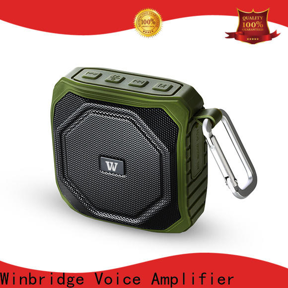 Winbridge custom bluetooth home speakers with touch panel for cafe
