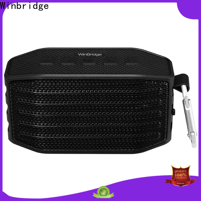 top best mini bluetooth speaker for busniess for home