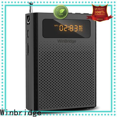 Winbridge voice amplifier supplier for sale