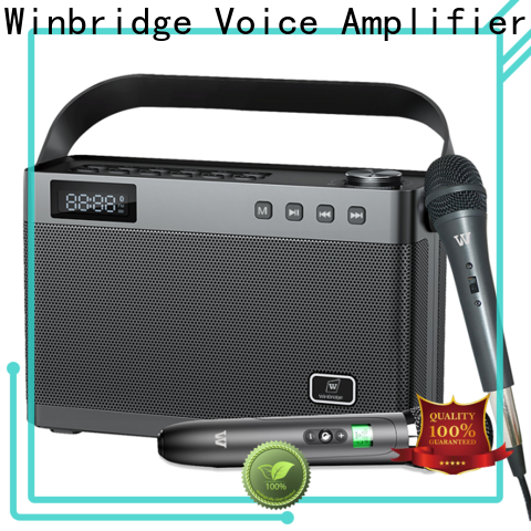 multifunctional karaoke microphone with speaker with fm wireless microphone for dance