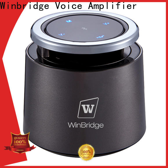 Winbridge outdoor bluetooth speaker box factory for cafe