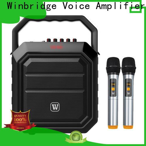 Winbridge best portable pa speakers company for sale